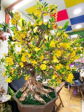 Bà chủ Sài Gòn dùng 35 kg đất sét làm cây mai cao 2 m chơi Tết
