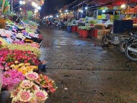 Hà Nội: Hoa đào bung nụ, tiểu thương bán hoa muốn