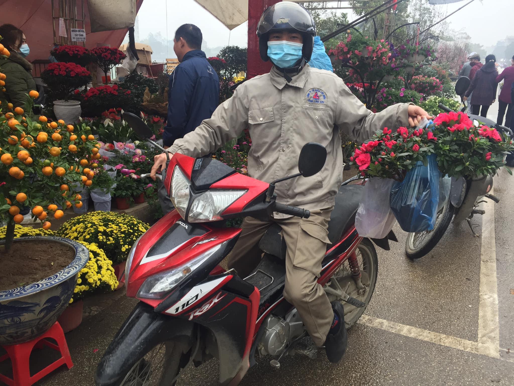 Lào Cai: Lan, đào, quất