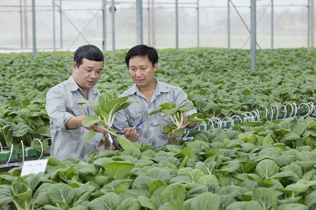 Ngồi Hà Nội cho gà ăn tận Đắk Lắk, ông nông dân mặc comple thu triệu USD - 2