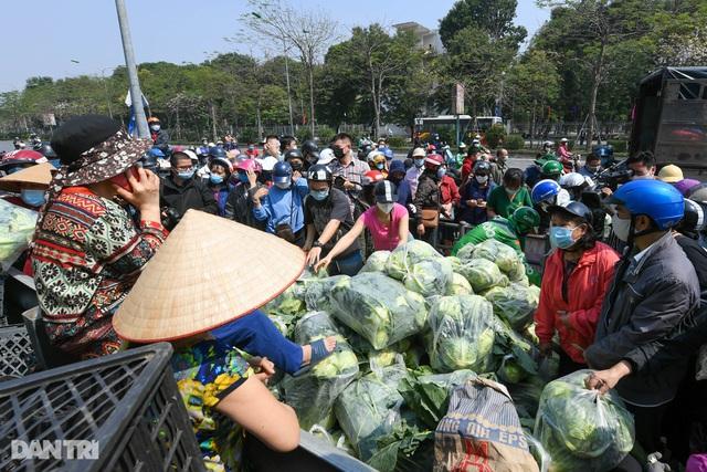 Sự hà khắc của hàng xóm và cuộc chữa cháy chóng vánh nông sản Hải Dương - 8