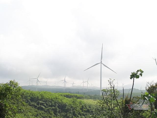 Thủ phủ điện gió số 1 Việt Nam: Khó tin 1 sào đất đồi hét giá 4 tỷ đồng - 5