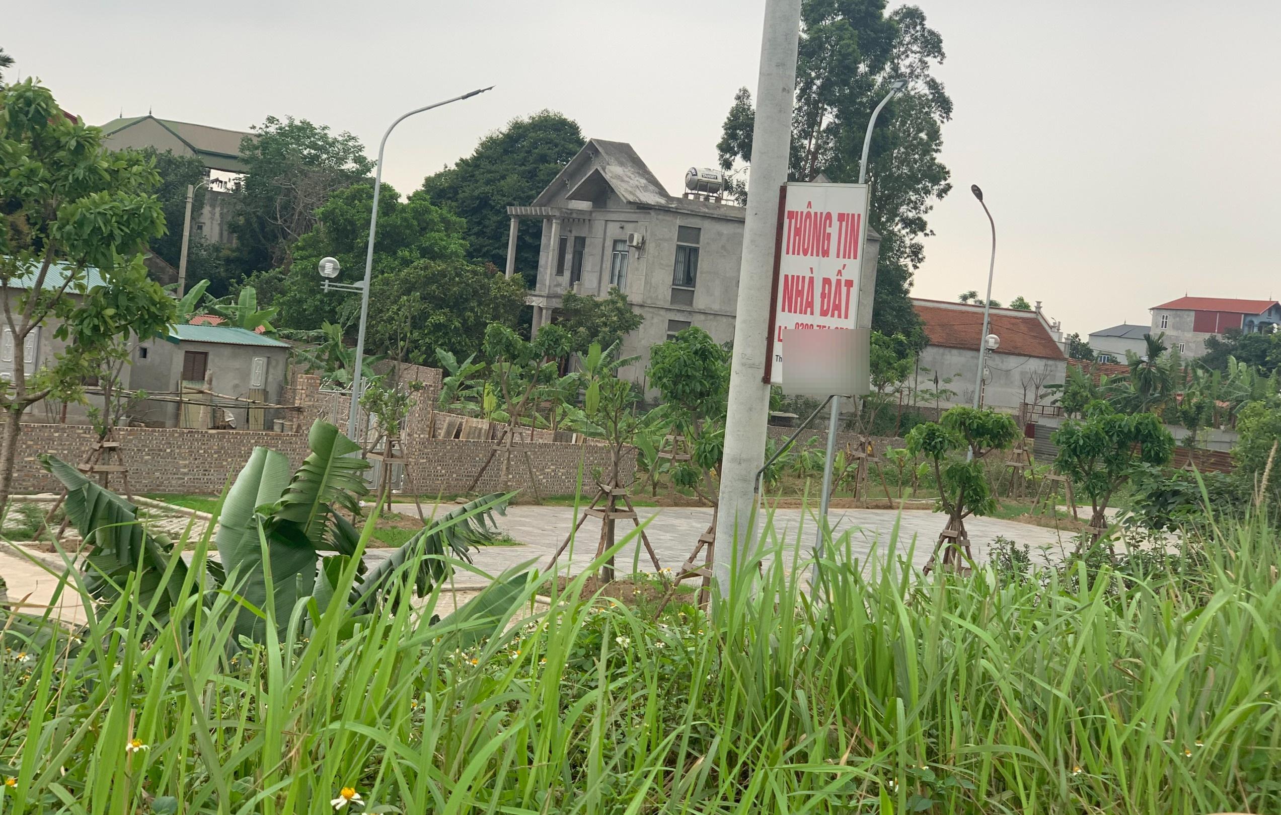 Nhao nhao lao vào đất: Có lo ngại về rủi ro tín dụng bất động sản?