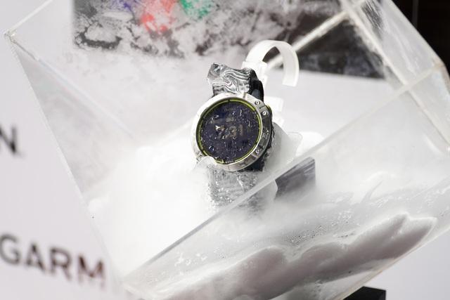 Smartwatch pin 65 ngày, giá 20 triệu đồng về Việt Nam - 7