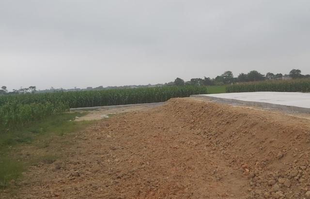 Sắp có tiền tỷ từ vụ đấu giá đất rúng động vùng quê, chính quyền vẫn lo - 4