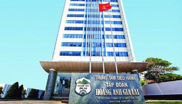Thua lỗ triền miên, cổ phiếu Hoàng Anh Gia Lai nhận hung tin - 1