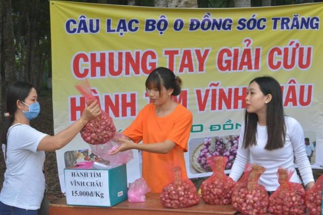 Giải cứu được cả trăm tấn hành tím Vĩnh Châu đặc sản giá 15.000 đồng/kg - 1