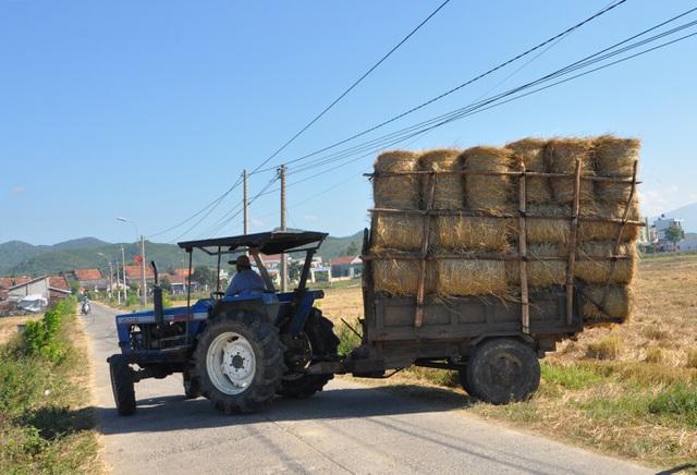 Đội nắng 40 độ C, nông dân kiếm tiền từ nghề cuộn rơm thuê - 7