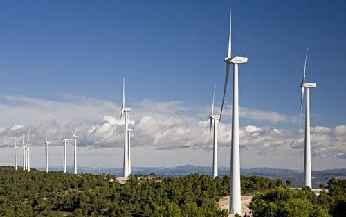 Hơn trăm triệu USD được rót vào dự án điện gió ở Quảng Trị