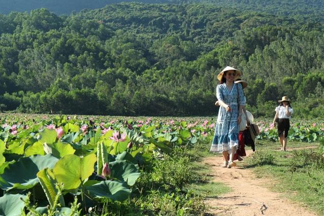 Cả làng trồng sen, chỉ bán hạt cũng lãi gấp đôi so với trồng lúa - 5