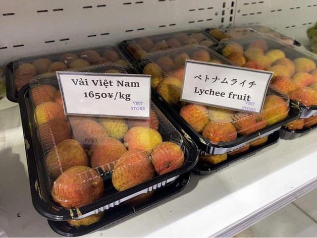 Giá khoai lang giảm kỷ lục, chưa tới 1.000 đồng/kg: Nông dân khóc ròng - 4
