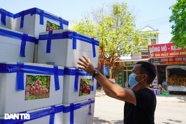 Bắc Giang: Nông dân kêu trời vì giá vải thiều lên xuống thất thường - 11