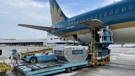 Đề nghị giảm giá cước vận chuyển vải thiều Bắc Giang theo đường hàng không