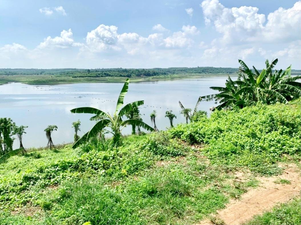 Người Sài Gòn thích bỏ phố về rừng, đất vườn hút khách