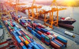 Nhiều doanh nghiệp xuất khẩu phải hủy đơn hàng, có nguy cơ mất thị trường
