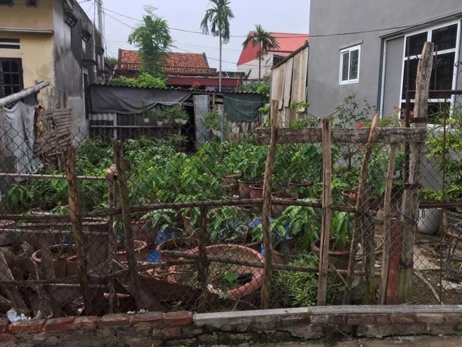 Cơn sốt lắng xuống, giá đất Văn Giang có nơi giảm gần một nửa - 3