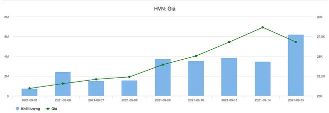 Đu đỉnh cổ phiếu Vietnam Airlines: Đắng lòng vì lỗ, nghẹt thở vì... chờ - 3