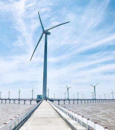 Tăng điện than, giảm điện gió, điện mặt trời ở quy hoạch điện 8: Bước lùi?