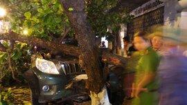 Xế hộp Prado lao qua hàng rào đâm đổ cây bên đường