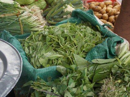 Đua nhau trữ rau xanh