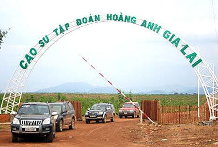 Global Witness tiếp tục chỉ trích hoạt động của Hoàng Anh Gia Lai tại Lào, Campuchia