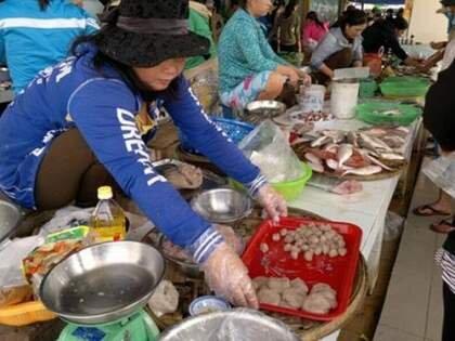 Người tiêu dùng phải ăn cá chứa Urê đến bao giờ?