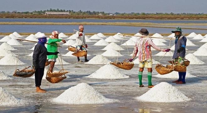 Việt Nam thiếu muối, đường?