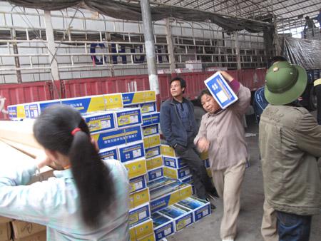 Quá dễ tìm mua thuốc tăng trưởng của Trung Quốc cho rau quả!