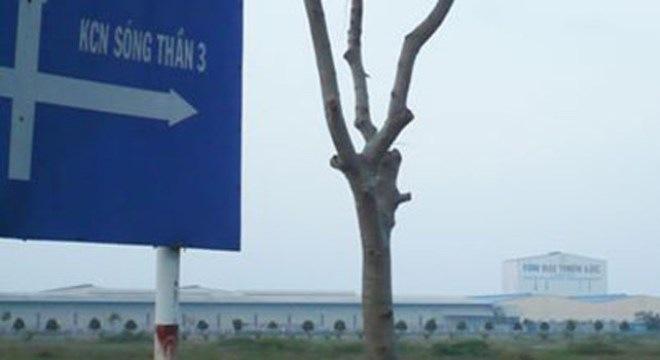 Vụ ông Huỳnh Uy Dũng: Ai cho phép Đại Nam biến khu công nghiệp thành đất ở?