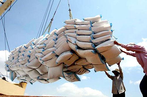 Giá gạo Việt Nam đột ngột cao nhất thế giới