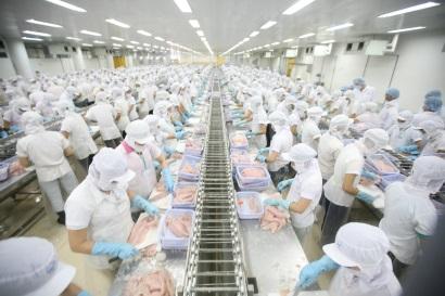 VASEP kiến nghị doanh nghiệp có nhà máy mới được xuất khẩu cá tra