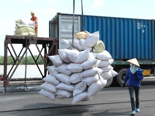 Gia tăng giá trị gạo xuất khẩu