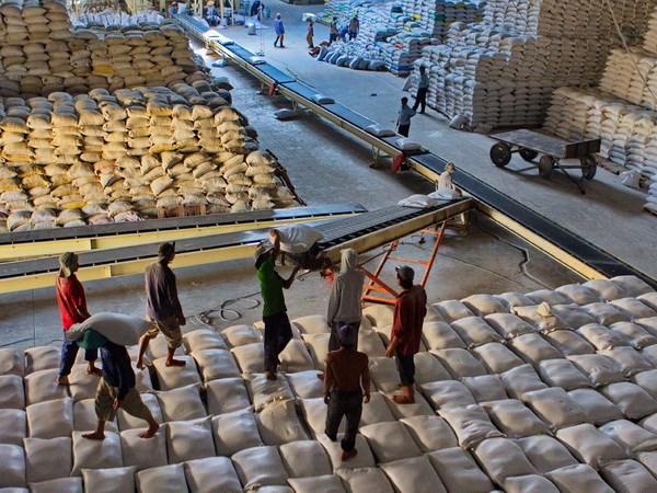 Mexico muốn tìm cơ chế để nhập khẩu gạo Việt Nam