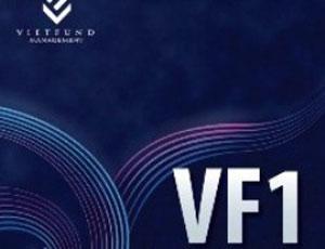 Tháng 11, NĐT rút ròng 360 tỷ đồng khỏi VF1