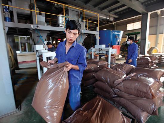 Doanh nghiệp xuất ngoại thuê đất trồng nguyên liệu