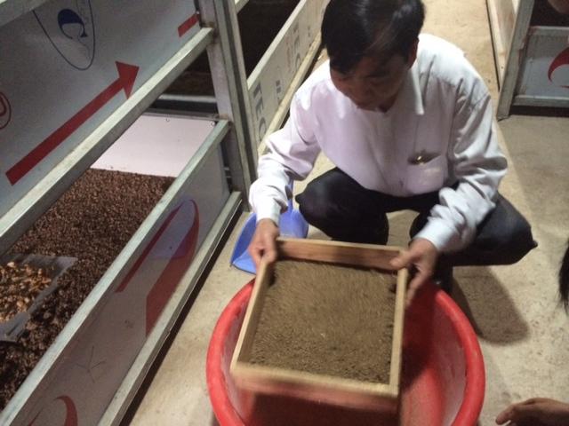 Người Trung Quốc sang Việt Nam lập trại nuôi gián