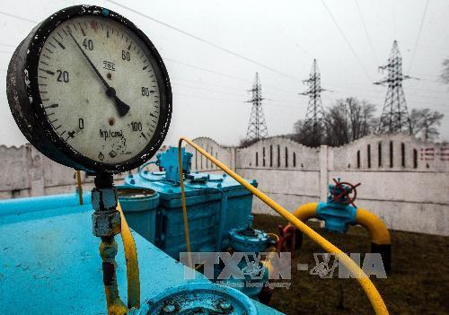 Shell ngừng đàm phán về dự án khí đốt với Ukraine