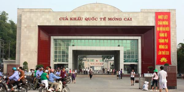 Nầm lợn đông lạnh Trung Quốc liên tục