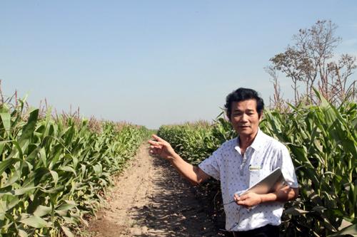 HAGL lên kế hoạch niêm yết mảng nông nghiệp tại Singapore