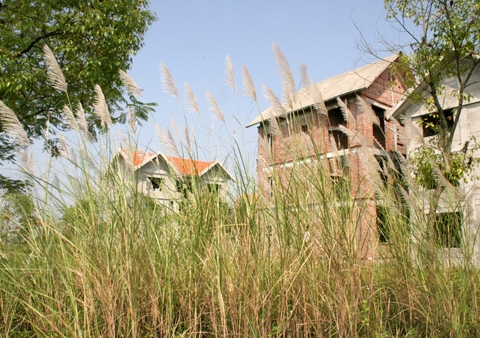 Cấm xây mới nhà đất: Hệ lụy ai gánh?