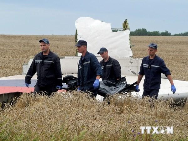 Malaysia Airlines đổi số hiệu chuyến bay MH17 thành MH19