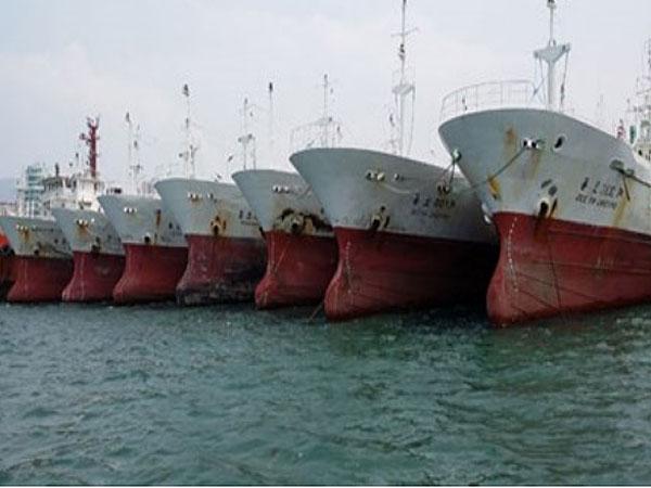 Bác đề nghị nhập tàu cũ của 2 đại gia