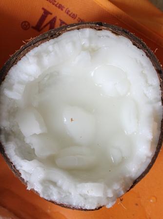 Giống dừa