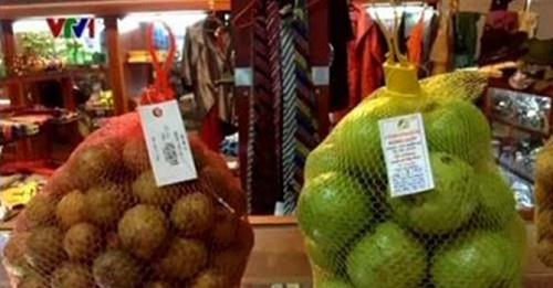 Truy sự thật về nguồn gốc hoa quả bán ở các sân bay