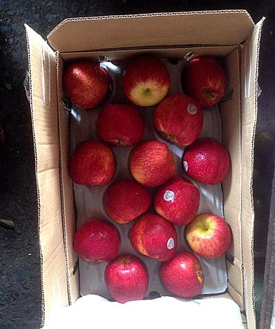 Những loại tem cực đơn giản được dán lên trái táo