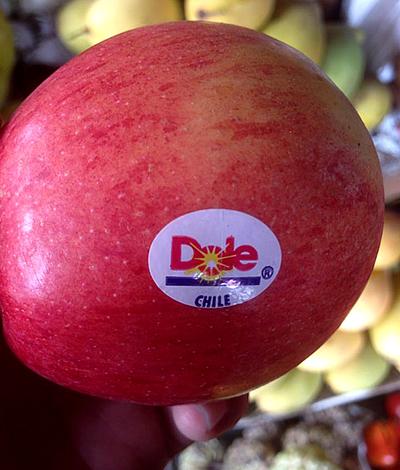 Khó mà biết được nguồn gốc thật của những loại trái cây này