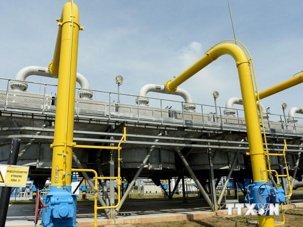 Ukraine chấp nhận tạm mua khí đốt của Nga theo giá thị trường
