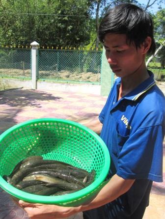 Người đẩy côn phải hết sức chú ý để phát hiện những chỗ cá chúi để dùng nơm bắt