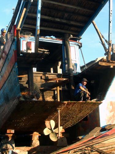 đánh-cá, xã-đảo, Hải-Bình, đánh-bắt-xa-bờ, hải-sản, đội-tàu, cảng-cá
