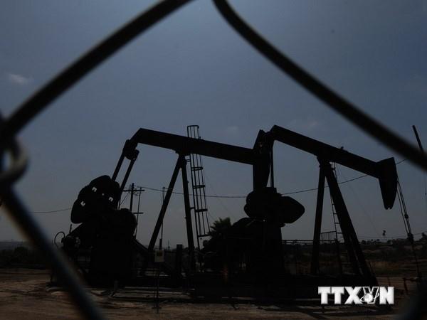 IMF cảnh báo nguy cơ với các nước vùng Vịnh nếu giá dầu xuống thấp
